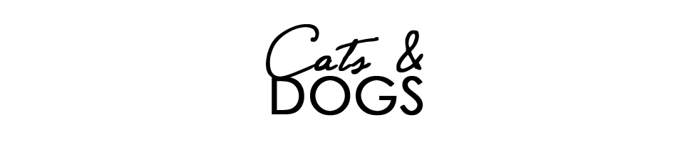 CATS & DOGS - Personal Style Blog From Berlin